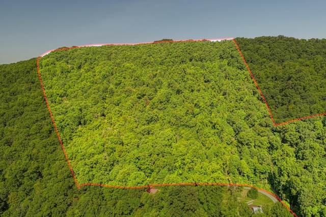Tbd Bays Mountain Trail, Kingsport, TN 37660 (MLS #9928504) :: Conservus Real Estate Group
