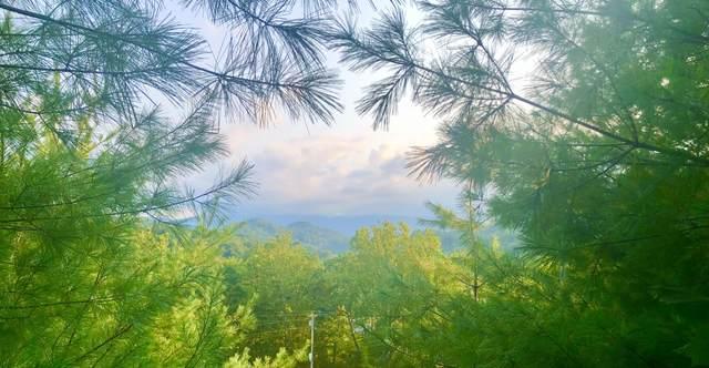 0 Hwy 19, Roan Mountain, TN 37687 (MLS #9928550) :: Highlands Realty, Inc.