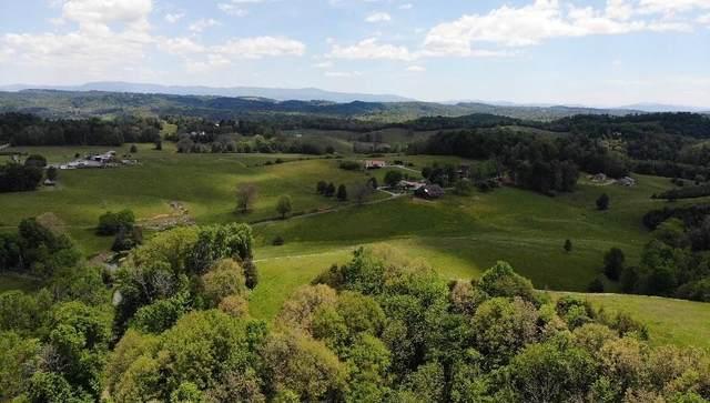 100 Black Horn Lane, Baileyton, TN 37745 (MLS #9928577) :: Conservus Real Estate Group