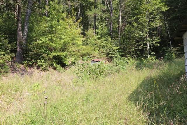 Tbd Grassy Creek Rd, Rogersville, TN 37857 (MLS #9928579) :: Red Door Agency, LLC