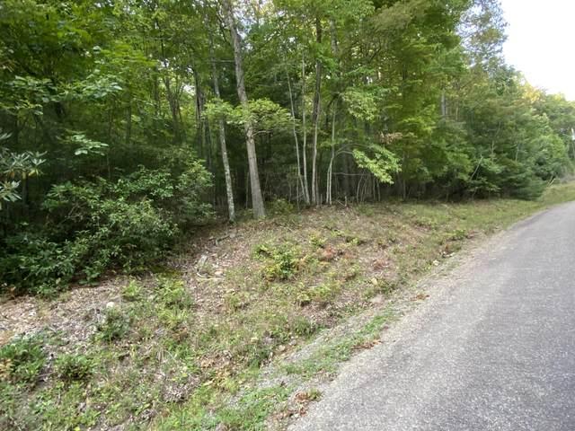 Tbd Preserve Private Drive, Mountain City, TN 37683 (MLS #9928651) :: Bridge Pointe Real Estate