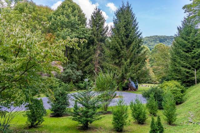 102 Will Hughes Road, Roan Mountain, TN 37687 (MLS #9928693) :: Highlands Realty, Inc.
