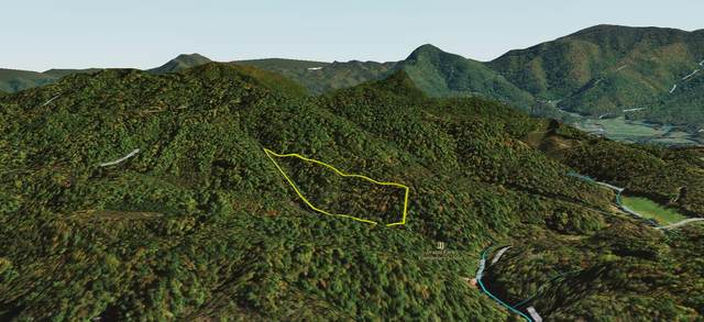 Tbd Big Creek Rd Off, Hartford, TN 37753 (MLS #9928730) :: Highlands Realty, Inc.