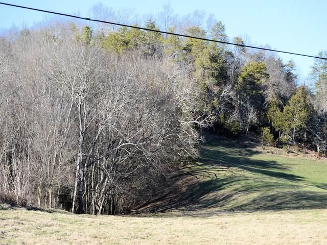 2932 Poplar Springs Road, Greeneville, TN 37743 (MLS #9928766) :: Highlands Realty, Inc.