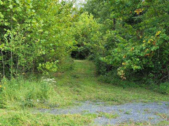 000 Rocky Hollow Road, Rogersville, TN 37857 (MLS #9928769) :: Red Door Agency, LLC