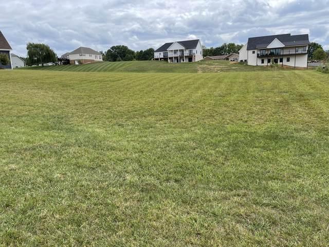 139 Lake View Estates Drive, Bristol, TN 37620 (MLS #9928778) :: Conservus Real Estate Group