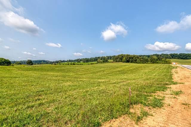 000 Burem Road, Rogersville, TN 37857 (MLS #9928823) :: Highlands Realty, Inc.