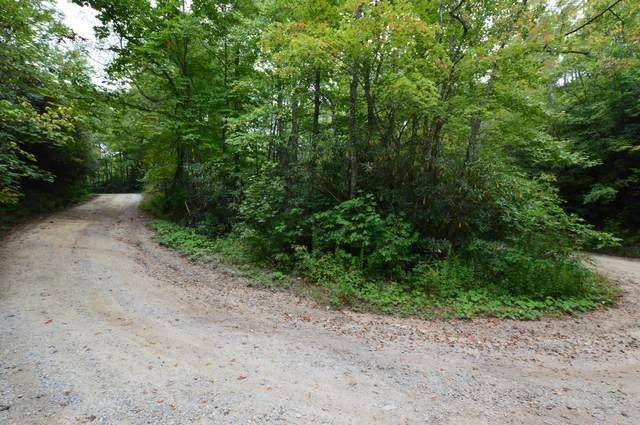 Tbd Dennis Cove Road, Hampton, TN 37658 (MLS #9928825) :: Highlands Realty, Inc.