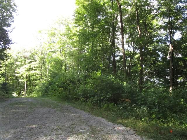 Lot 7 Wilderness Road, Unicoi, TN 37692 (MLS #9928834) :: Red Door Agency, LLC