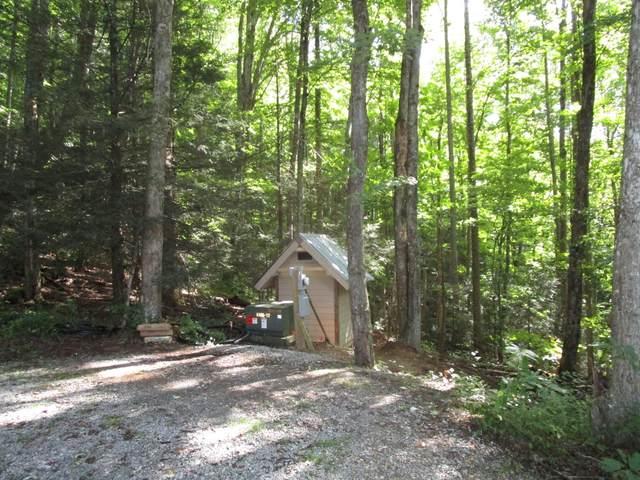 Lot 60 Wilderness Road, Unicoi, TN 37692 (MLS #9928835) :: Red Door Agency, LLC