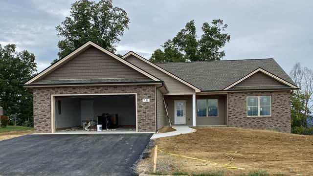 731 Birds Eye View, Jonesborough, TN 37659 (MLS #9928909) :: Red Door Agency, LLC