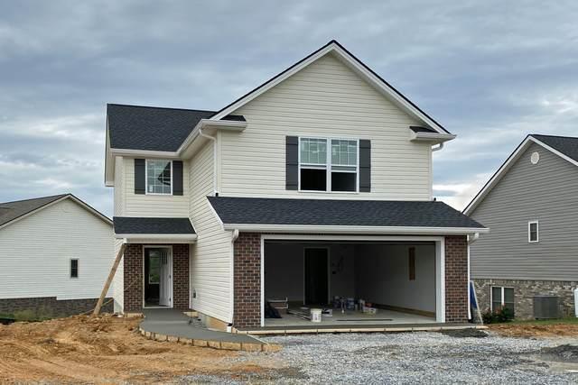 1329 Lemongrass Drive, Jonesborough, TN 37659 (MLS #9928914) :: Tim Stout Group Tri-Cities