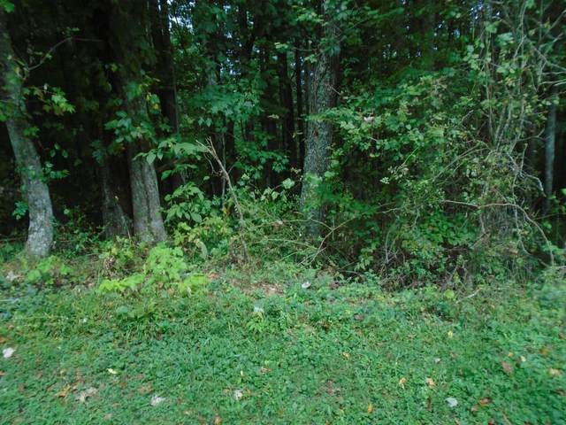 Tbd Mink Hills Road, Mountain City, TN 37683 (MLS #9928938) :: Bridge Pointe Real Estate