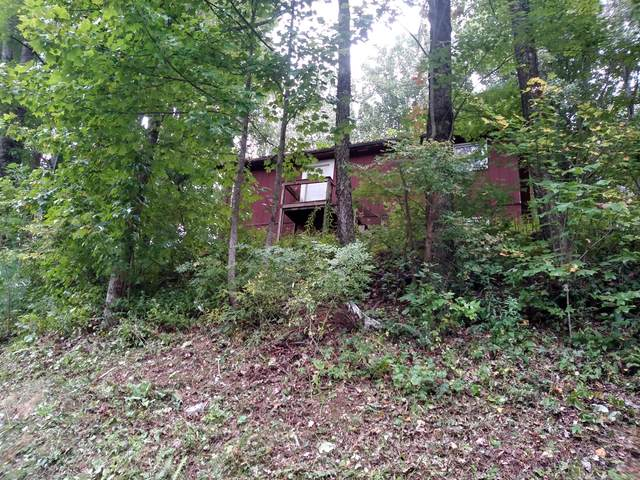179 Muskrat Ramble Road, Mountain City, TN 37683 (MLS #9928964) :: Bridge Pointe Real Estate