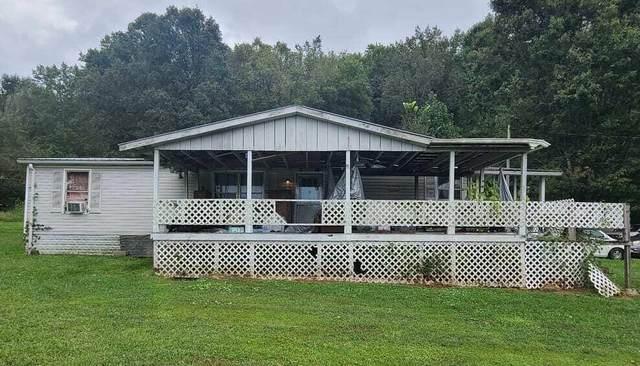 130 Tree Road, Cosby, TN 37722 (MLS #9928970) :: Highlands Realty, Inc.