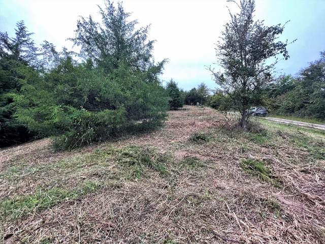 Lot 25 Winterpark Lane, Parrotsville, TN 37843 (MLS #9929036) :: Conservus Real Estate Group