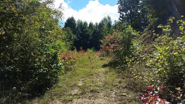 305 Honeymoon Hollow, Butler, TN 37640 (MLS #9929084) :: Tim Stout Group Tri-Cities