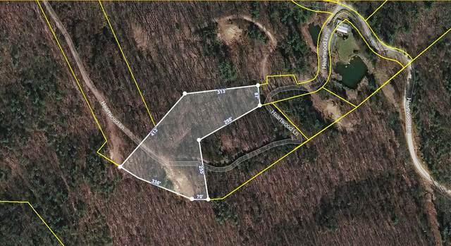 307 Honeymoon Hollow, Butler, TN 37640 (MLS #9929085) :: Conservus Real Estate Group