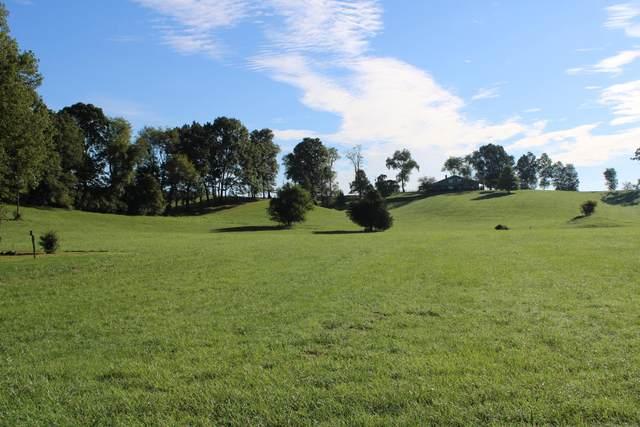 Tbd Mount Calm Drive, Glade Spring, VA 24340 (MLS #9929087) :: Conservus Real Estate Group