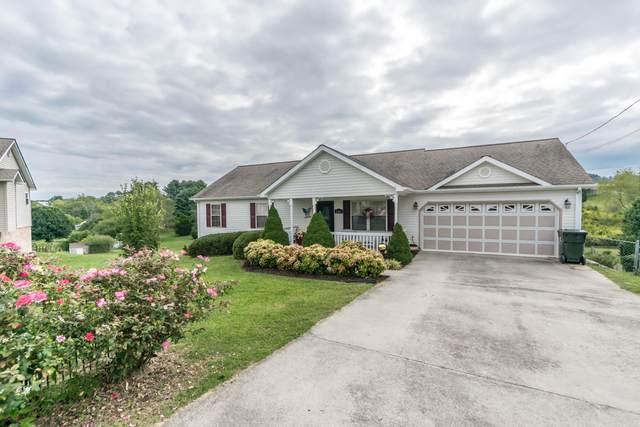 2146 Buttercup Lane, Limestone, TN 37681 (MLS #9929183) :: Red Door Agency, LLC