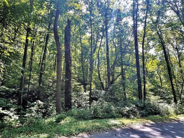 Tract Abc Dyer Hollow Road, Mohawk, TN 37810 (MLS #9929222) :: Red Door Agency, LLC