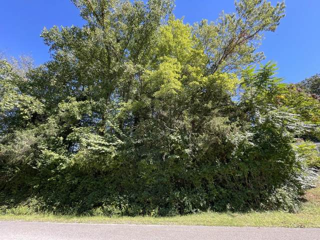 Lot 7 Castle Hgts Drive, Parrotsville, TN 37843 (MLS #9929226) :: Conservus Real Estate Group