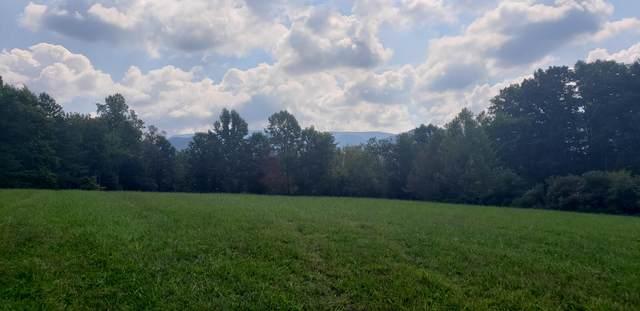 00 Horse Creek Park, Chuckey, TN 37641 (MLS #9929285) :: Conservus Real Estate Group