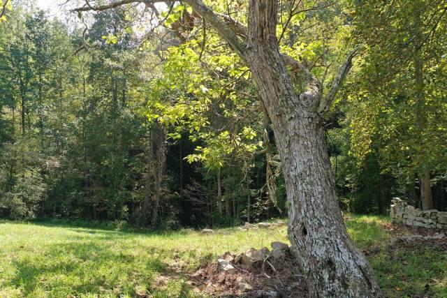 Tbd Barrett Hollow Road, Rogersville, TN 37857 (MLS #9929318) :: Conservus Real Estate Group