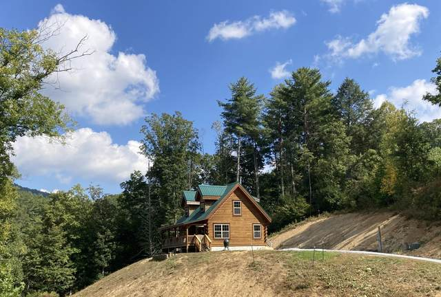 7519 Highway 19E, Roan Mountain, TN 37687 (MLS #9929325) :: Conservus Real Estate Group