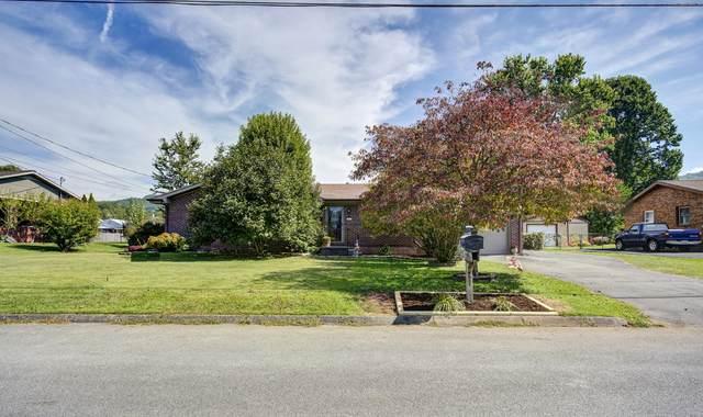 105 Mesa Drive Drive, Erwin, TN 37650 (MLS #9929330) :: Red Door Agency, LLC