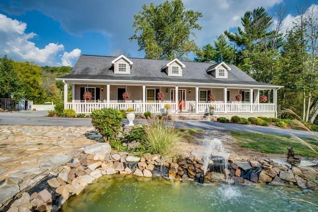 2953 Cliffside Road, Kingsport, TN 37664 (MLS #9929394) :: Conservus Real Estate Group