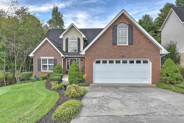 4501 Palomino Drive, Kingsport, TN 37664 (MLS #9929413) :: Conservus Real Estate Group