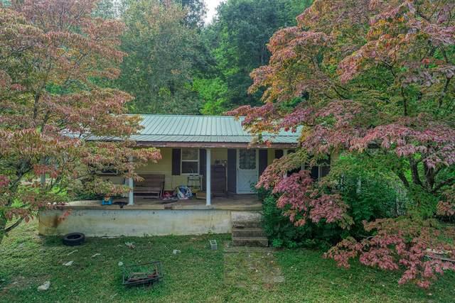 420 Bearfield Road, Chuckey, TN 37641 (MLS #9929439) :: Red Door Agency, LLC