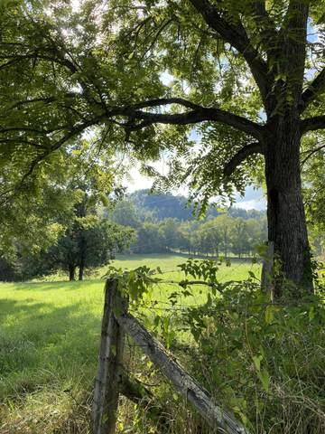 902 Montgomery Hollow Road, Tazewell, TN 37879 (MLS #9929501) :: Red Door Agency, LLC