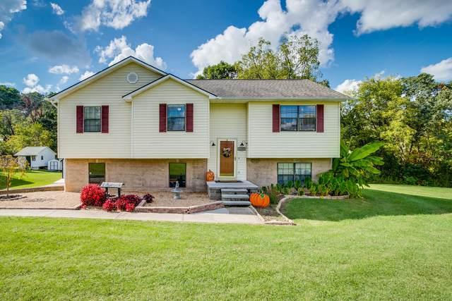 1107 Gray Station Road, Gray, TN 37615 (MLS #9929528) :: Red Door Agency, LLC