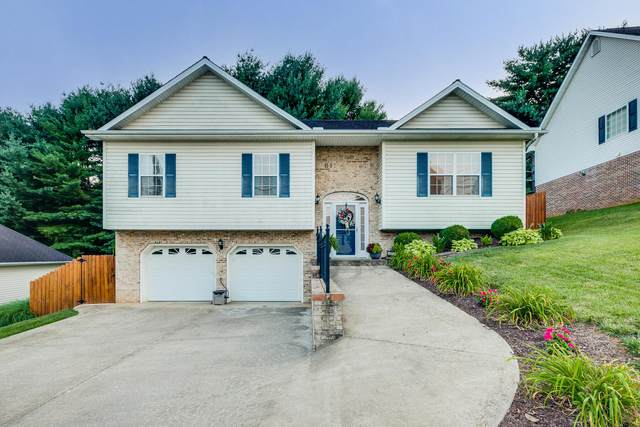 4513 Palomino Drive, Kingsport, TN 37664 (MLS #9929538) :: Conservus Real Estate Group
