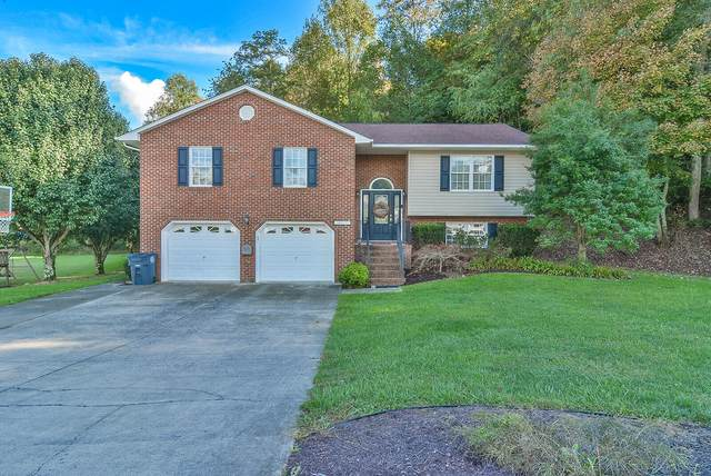 417 Creekside Drive, Mount Carmel, TN 37645 (MLS #9929551) :: Red Door Agency, LLC