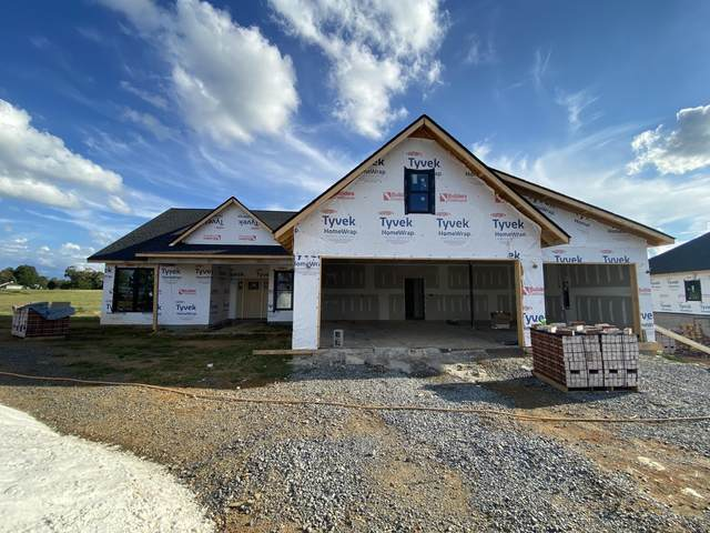 253 Hillendale Lane, Gray, TN 37615 (MLS #9929562) :: Conservus Real Estate Group