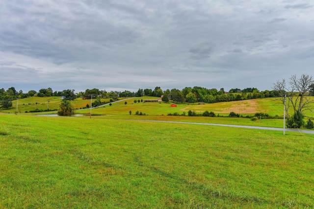 Tbd Washington College Road, Limestone, TN 37681 (MLS #9929570) :: Conservus Real Estate Group