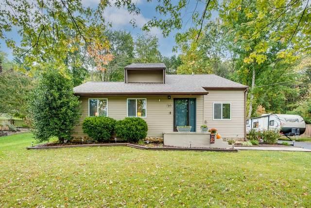 3801 Thornton Drive, Kingsport, TN 37664 (MLS #9929616) :: Conservus Real Estate Group