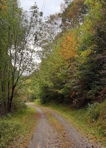 Tbd Indian Creek Lane, Bristol, VA 24202 (MLS #9929628) :: Red Door Agency, LLC