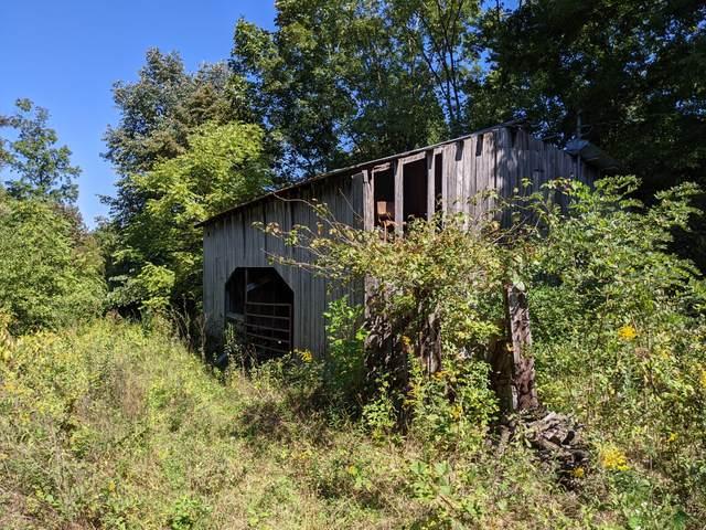 Tbd Nancy Hollow Road, Birchleaf, VA 24220 (MLS #9929647) :: Conservus Real Estate Group
