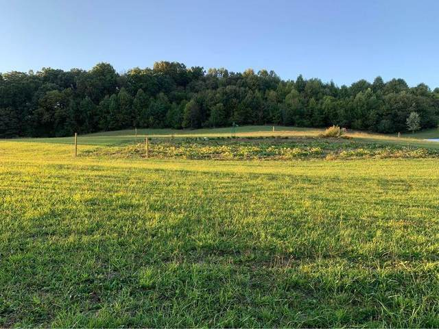 4551 Highway 126, Blountville, TN 37617 (MLS #9929650) :: Conservus Real Estate Group