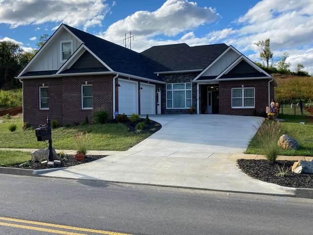 1008 Shadyside Drive, Kingsport, TN 37664 (MLS #9929661) :: Red Door Agency, LLC
