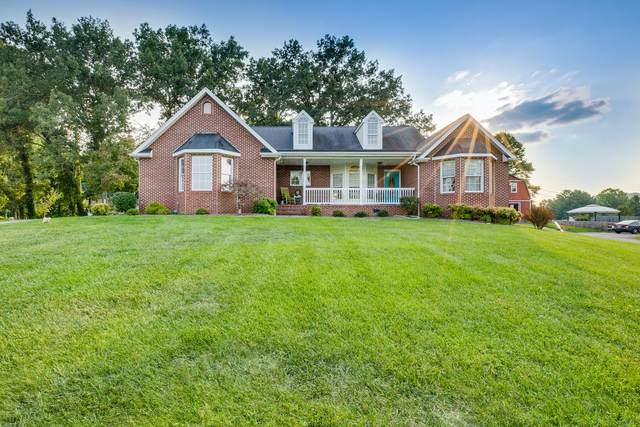 264 Cain Drive, Blountville, TN 37617 (MLS #9929693) :: Conservus Real Estate Group