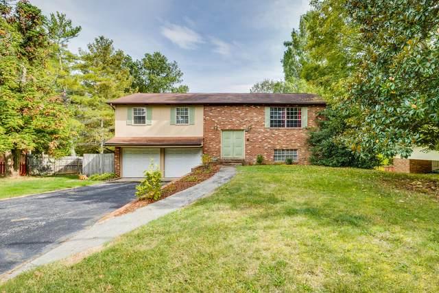 132 Greyland Drive, Gray, TN 37615 (MLS #9929705) :: Red Door Agency, LLC
