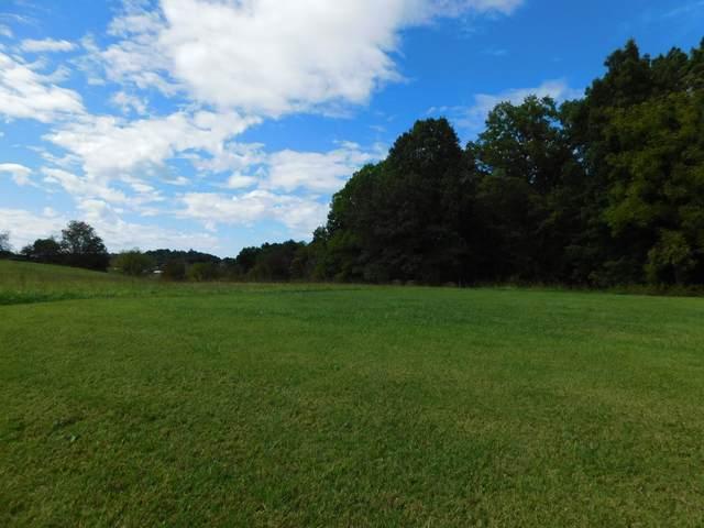 438 Pickens Bridge Road, Piney Flats, TN 37686 (MLS #9929716) :: Bridge Pointe Real Estate
