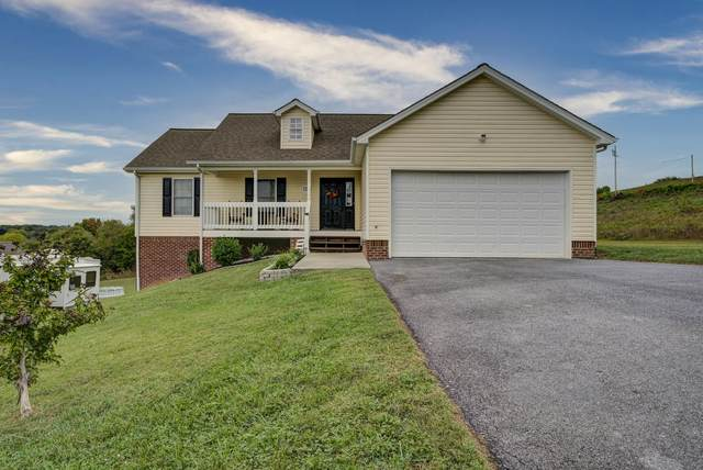 133 Carters View Way, Telford, TN 37690 (MLS #9929718) :: Conservus Real Estate Group