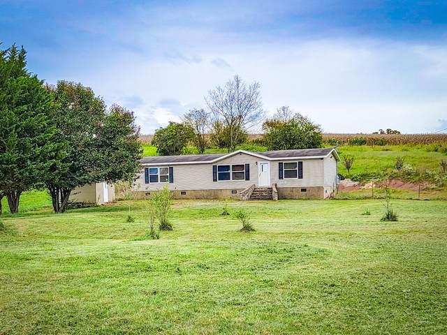 436 Bowmantown Road, Limestone, TN 37681 (MLS #9929724) :: Conservus Real Estate Group