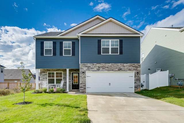 1070 Hammett Road, Johnson City, TN 37615 (MLS #9929734) :: Red Door Agency, LLC